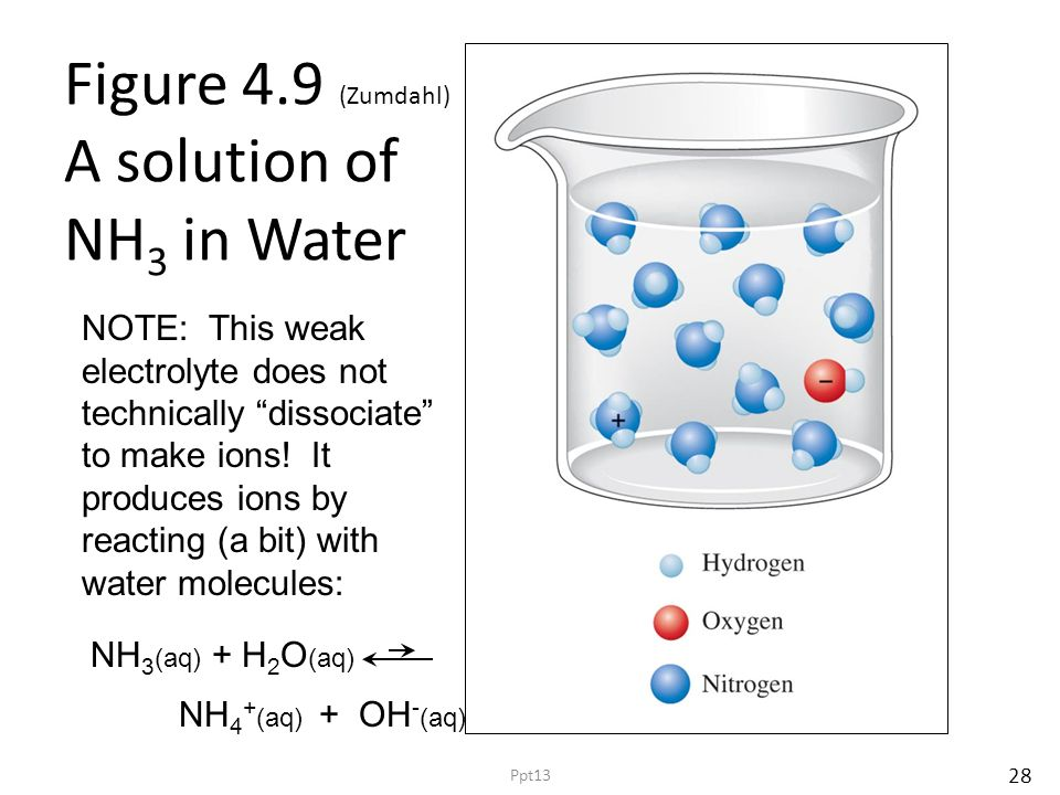 Figure 4.9 (Zumdahl) A solution of NH 3 in Water 28 Ppt13 NH 3 (aq) + H 2 O (aq) NH 4 + (aq) + OH - (aq) NOTE: This weak electrolyte does not technically dissociate to make ions.