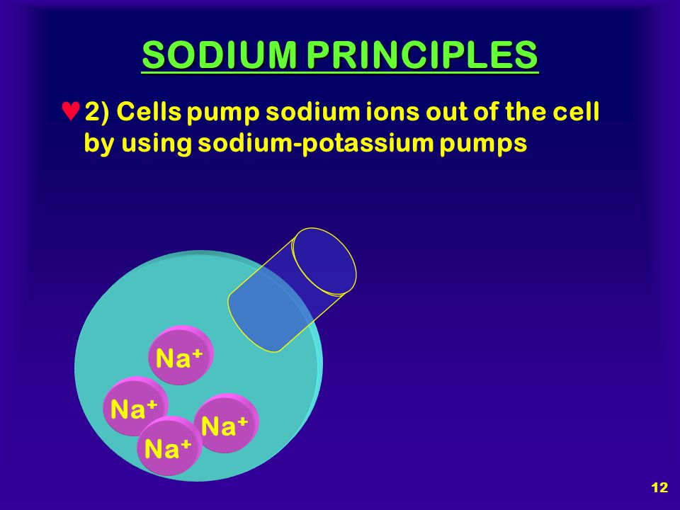 SODIUM PRINCIPLES 1) Sodium ions do not cross cell membranes as quickly as water does Na + H2OH2O H2OH2O H2OH2O H2OH2O H2OH2O