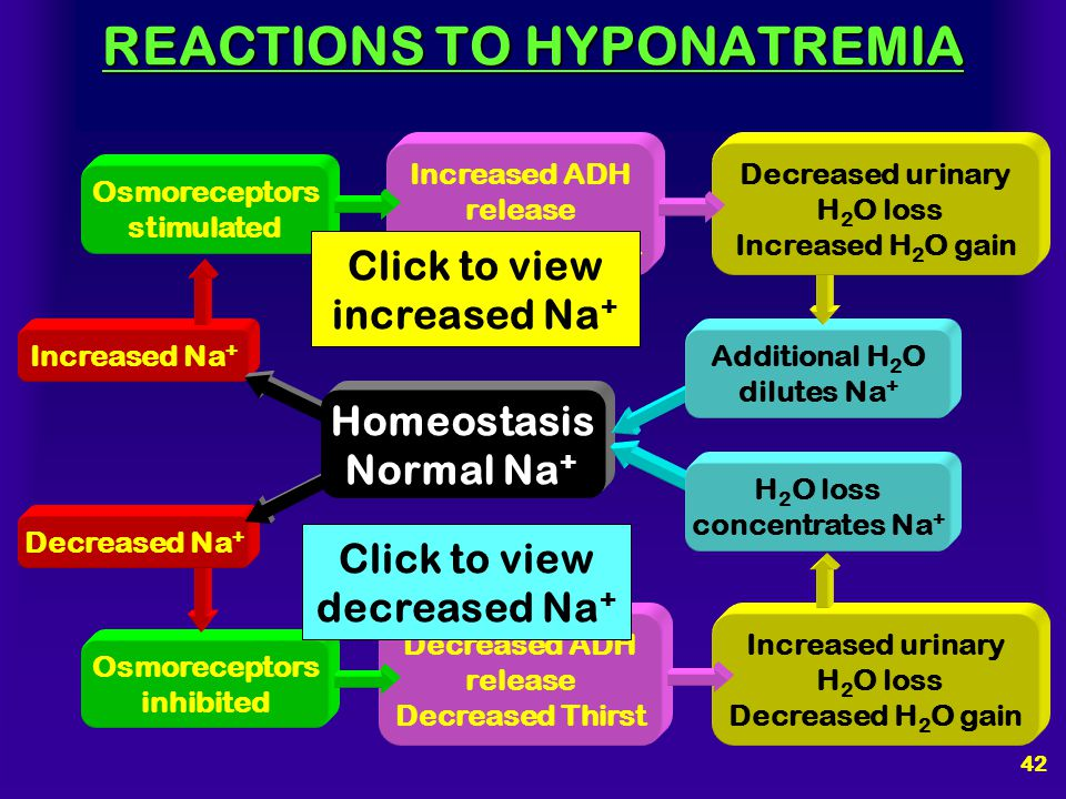 41 CAUSES OF HYPONATREMIA