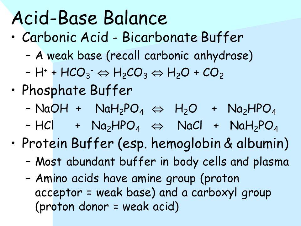 Acid-Base Balance Carbonic Acid - Bicarbonate Buffer –A weak base (recall carbonic anhydrase) –H + + HCO 3 -  H 2 CO 3  H 2 O + CO 2 Phosphate Buffer –NaOH + NaH 2 PO 4  H 2 O + Na 2 HPO 4 –HCl + Na 2 HPO 4  NaCl + NaH 2 PO 4 Protein Buffer (esp.