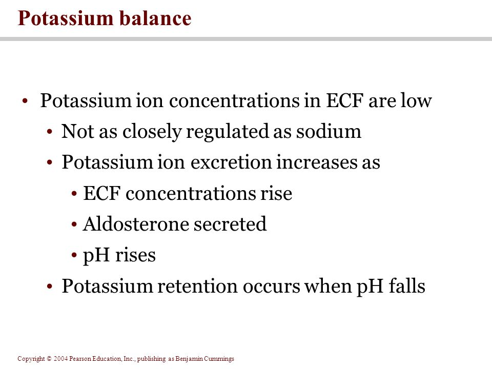 Copyright © 2004 Pearson Education, Inc., publishing as Benjamin Cummings Potassium ion concentrations in ECF are low Not as closely regulated as sodi