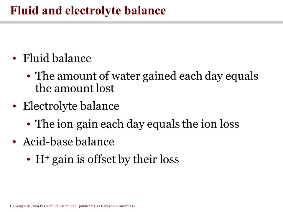 Copyright © 2004 Pearson Education, Inc., publishing as Benjamin Cummings Phosphate balance Absorbed by the PCT in response to calcitriol Chloride balance Absorbed at digestive tract to balance losses in urine and sweat ECF Concentrations of other electrolytes Animation: Electrolyte homeostasis PLAY