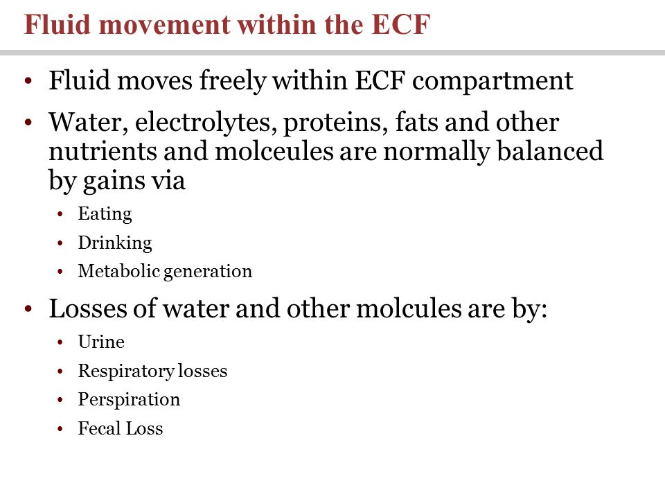 Fluid moves freely within ECF compartment Water, electrolytes, proteins, fats and other nutrients and molceules are normally balanced by gains via Eating Drinking Metabolic generation Losses of water and other molcules are by: Urine Respiratory losses Perspiration Fecal Loss Fluid movement within the ECF