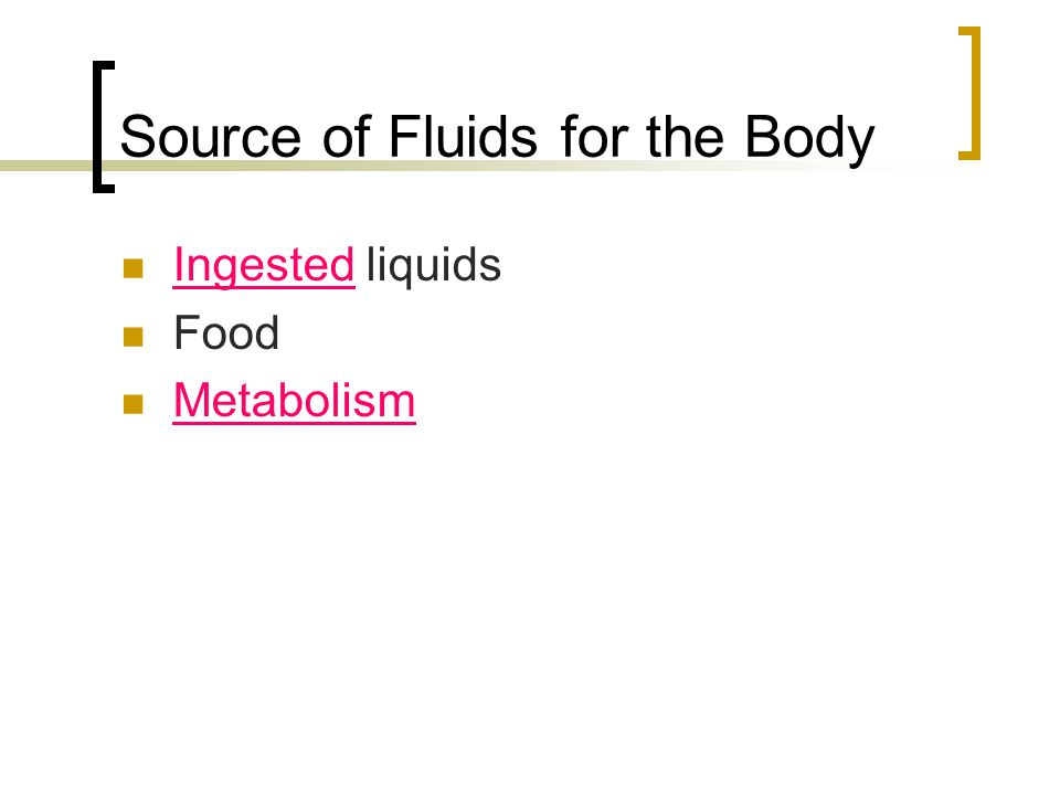 Source of Fluids for the Body Ingested liquids Food Metabolism