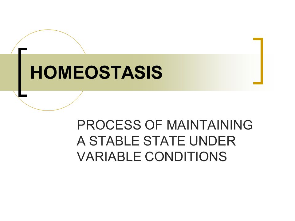 HOMEOSTASIS PROCESS OF MAINTAINING A STABLE STATE UNDER VARIABLE CONDITIONS
