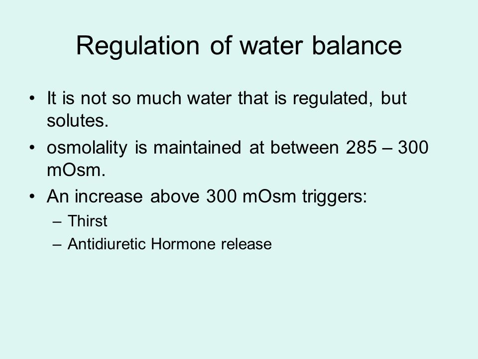 Regulation of water balance It is not so much water that is regulated, but solutes. osmolality is maintained at between 285 – 300 mOsm. An increase ab