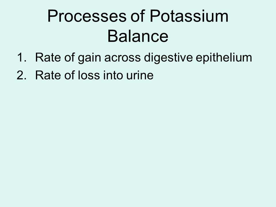 Processes of Potassium Balance 1.Rate of gain across digestive epithelium 2.Rate of loss into urine