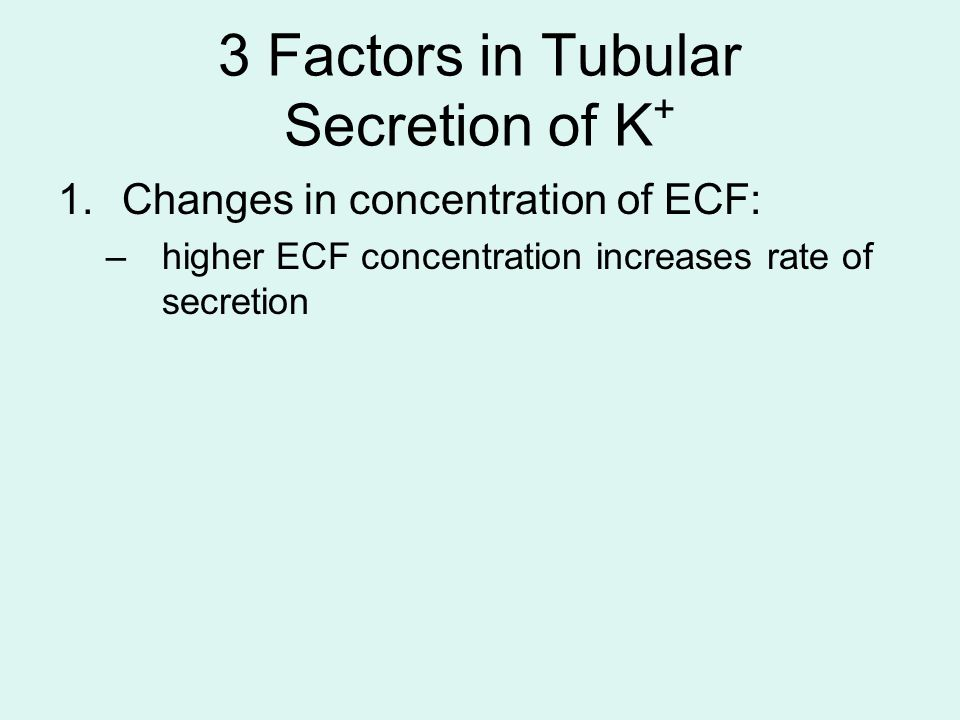 3 Factors in Tubular Secretion of K + 1.Changes in concentration of ECF: –higher ECF concentration increases rate of secretion