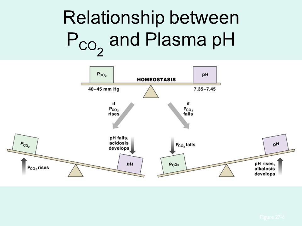 Relationship between P CO 2 and Plasma pH Figure 27–6