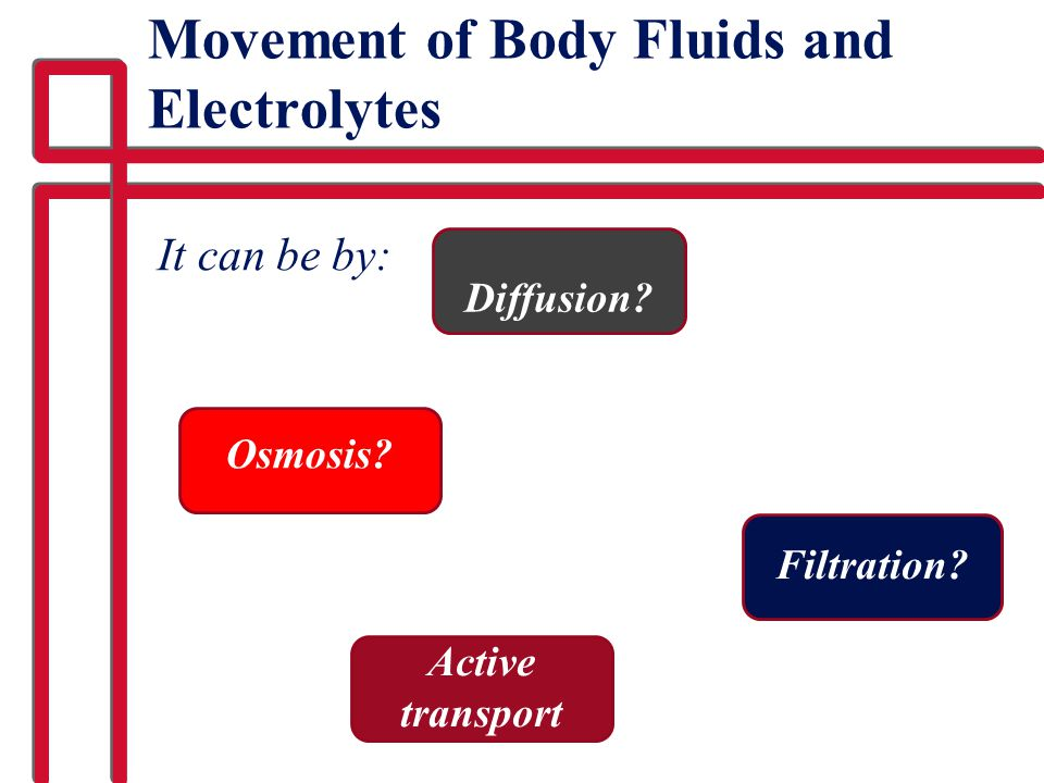 Movement of Body Fluids and Electrolytes It can be by: Osmosis? Diffusion? Filtration? Active transport