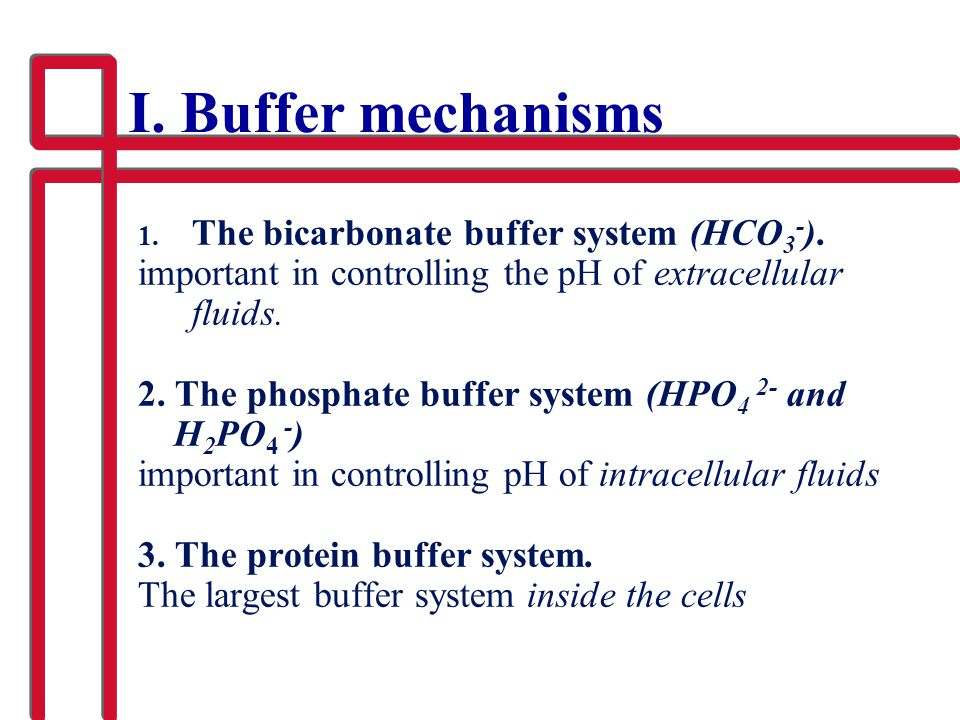 I. Buffer mechanisms 1. The bicarbonate buffer system (HCO 3 - ). important in controlling the pH of extracellular fluids. 2. The phosphate buffer sys