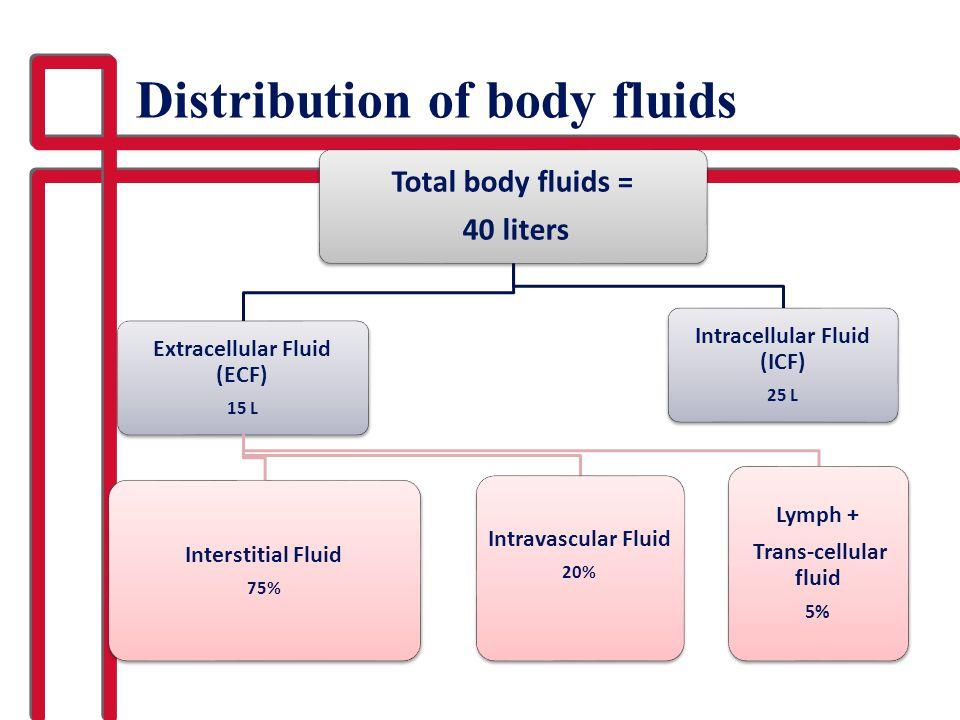 Distribution of body fluids Total body fluids = 40 liters Extracellular Fluid (ECF) 15 L Interstitial Fluid 75% Intravascular Fluid 20% Lymph + Trans-cellular fluid 5% Intracellular Fluid (ICF) 25 L