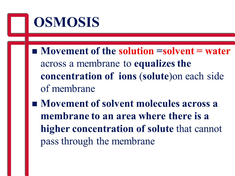 OSMOSIS n Movement of the solution =solvent = water across a membrane to equalizes the concentration of ions (solute)on each side of membrane n Moveme