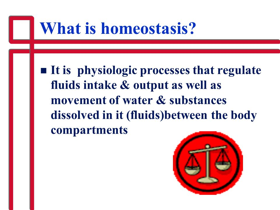 What is homeostasis? n It is physiologic processes that regulate fluids intake & output as well as movement of water & substances dissolved in it (flu