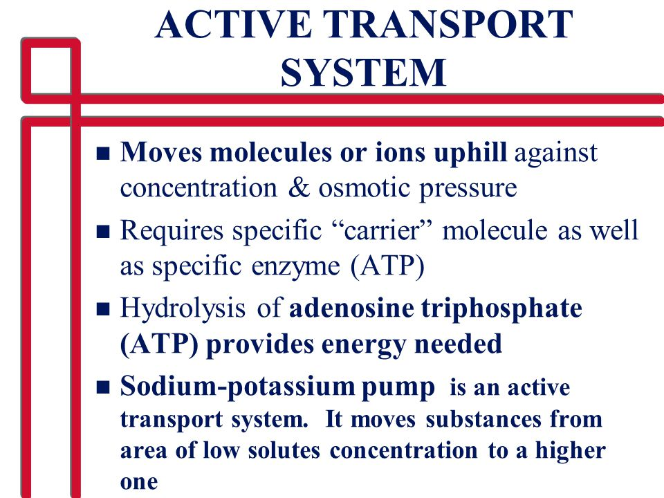 "ACTIVE TRANSPORT SYSTEM n Moves molecules or ions uphill against concentration & osmotic pressure n Requires specific ""carrier"" molecule as well as sp"