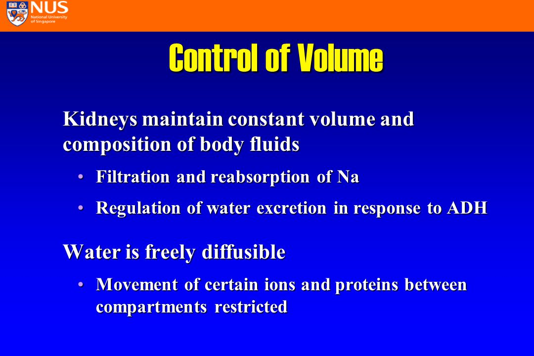 Control of Volume Kidneys maintain constant volume and composition of body fluids Filtration and reabsorption of NaFiltration and reabsorption of Na Regulation of water excretion in response to ADHRegulation of water excretion in response to ADH Water is freely diffusible Movement of certain ions and proteins between compartments restrictedMovement of certain ions and proteins between compartments restricted