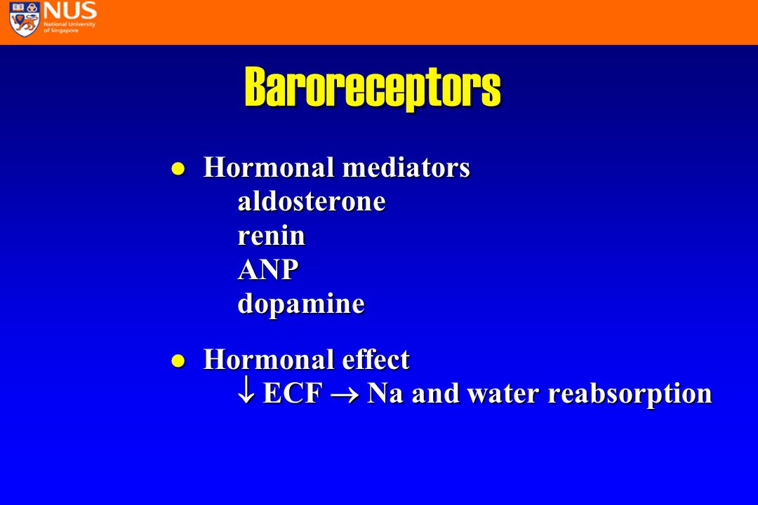 Baroreceptors l Hormonal mediators aldosterone renin ANP dopamine l Hormonal effect  ECF  Na and water reabsorption