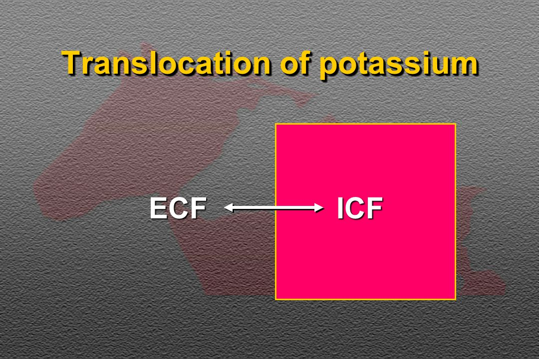 Translocation of potassium ICFECF