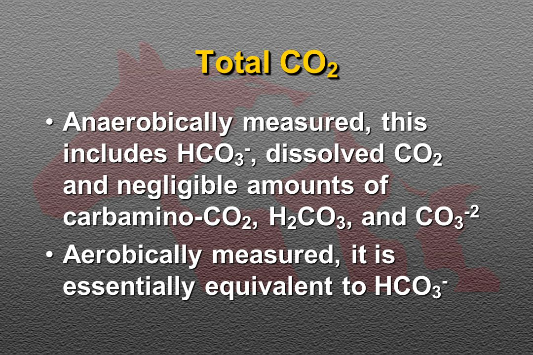 Total CO 2 Anaerobically measured, this includes HCO 3 -, dissolved CO 2 and negligible amounts of carbamino-CO 2, H 2 CO 3, and CO 3 -2Anaerobically measured, this includes HCO 3 -, dissolved CO 2 and negligible amounts of carbamino-CO 2, H 2 CO 3, and CO 3 -2 Aerobically measured, it is essentially equivalent to HCO 3 -Aerobically measured, it is essentially equivalent to HCO 3 -
