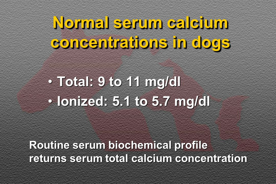 Normal serum calcium concentrations in dogs Total: 9 to 11 mg/dlTotal: 9 to 11 mg/dl Ionized: 5.1 to 5.7 mg/dlIonized: 5.1 to 5.7 mg/dl Routine serum biochemical profile returns serum total calcium concentration