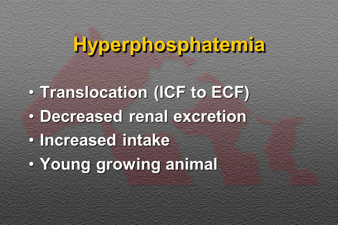 HyperphosphatemiaHyperphosphatemia Translocation (ICF to ECF)Translocation (ICF to ECF) Decreased renal excretionDecreased renal excretion Increased intakeIncreased intake Young growing animalYoung growing animal