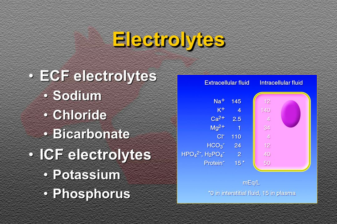 HypophosphatemiaHypophosphatemia Translocation (ECF to ICF)Translocation (ECF to ICF) Decreased renal reabsorptionDecreased renal reabsorption Decreased intestinal absorptionDecreased intestinal absorption Hypophosphatemia may occur in some horses with renal failure