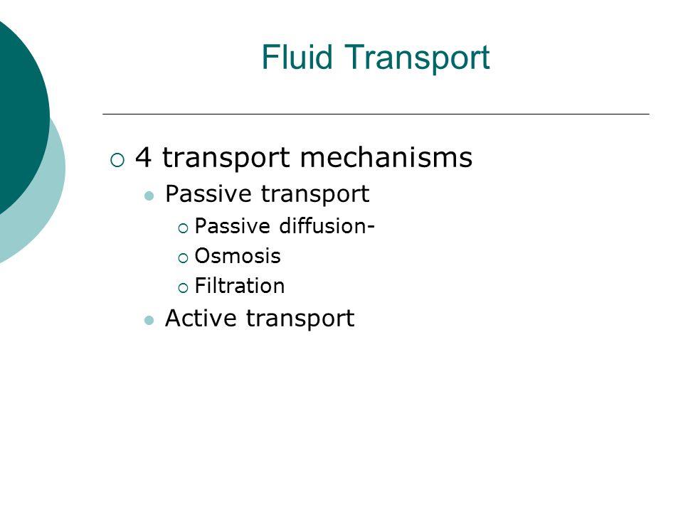 Fluid Transport  4 transport mechanisms Passive transport  Passive diffusion-  Osmosis  Filtration Active transport