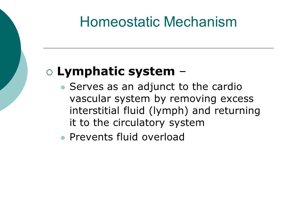 Homeostatic Mechanism  Lymphatic system – Serves as an adjunct to the cardio vascular system by removing excess interstitial fluid (lymph) and return