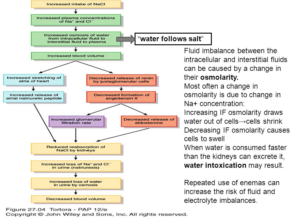 """water follows salt"" Fluid imbalance between the intracellular and interstitial fluids can be caused by a change in their osmolarity. Most often a cha"