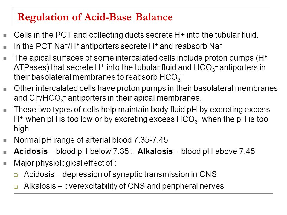 Regulation of Acid-Base Balance Cells in the PCT and collecting ducts secrete H+ into the tubular fluid. In the PCT Na + /H + antiporters secrete H +