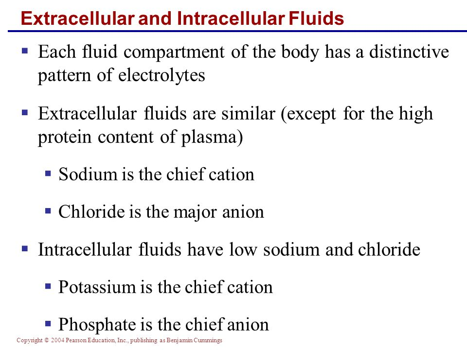 Copyright © 2004 Pearson Education, Inc., publishing as Benjamin Cummings Edema  Hindered fluid return usually reflects an imbalance in colloid osmotic pressures  Hypoproteinemia – low levels of plasma proteins  Forces fluids out of capillary beds at the arterial ends  Fluids fail to return at the venous ends  Results from protein malnutrition, liver disease, or glomerulonephritis