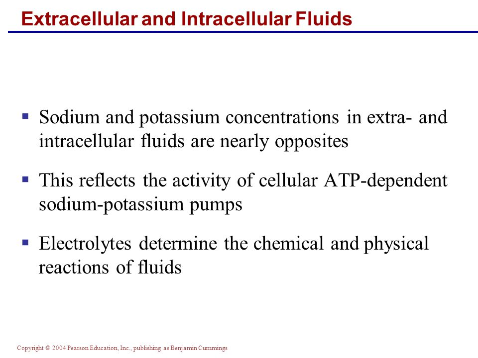 Copyright © 2004 Pearson Education, Inc., publishing as Benjamin Cummings Chemical Buffer Systems  Strong acids – all their H + is dissociated completely in water  Weak acids – dissociate partially in water and are efficient at preventing pH changes  Strong bases – dissociate easily in water and quickly tie up H +  Weak bases – accept H + more slowly (e.g., HCO 3 ¯ and NH 3 )