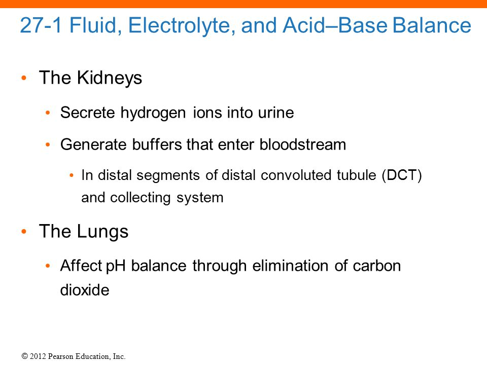 © 2012 Pearson Education, Inc. 27-1 Fluid, Electrolyte, and Acid–Base Balance The Kidneys Secrete hydrogen ions into urine Generate buffers that enter