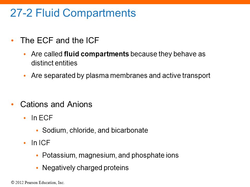© 2012 Pearson Education, Inc. 27-2 Fluid Compartments The ECF and the ICF Are called fluid compartments because they behave as distinct entities Are