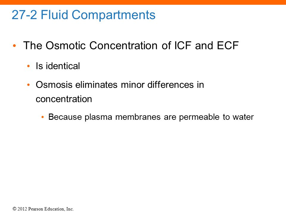© 2012 Pearson Education, Inc. 27-2 Fluid Compartments The Osmotic Concentration of ICF and ECF Is identical Osmosis eliminates minor differences in c
