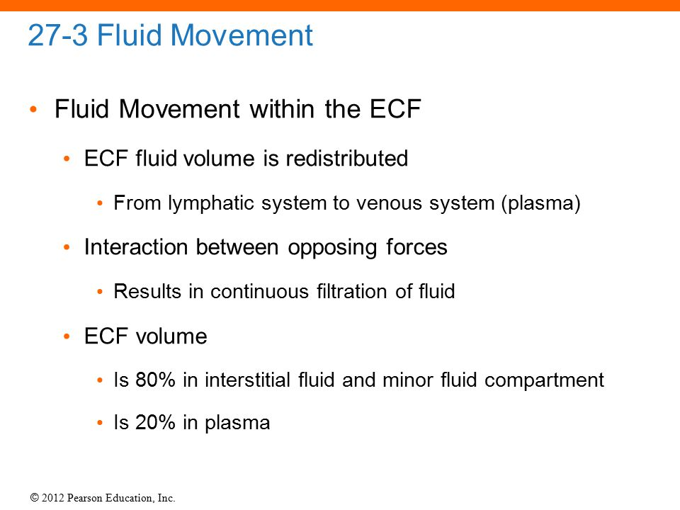 © 2012 Pearson Education, Inc. 27-3 Fluid Movement Fluid Movement within the ECF ECF fluid volume is redistributed From lymphatic system to venous sys