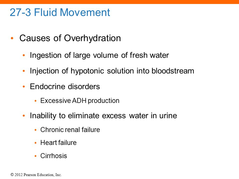 © 2012 Pearson Education, Inc. 27-3 Fluid Movement Causes of Overhydration Ingestion of large volume of fresh water Injection of hypotonic solution in