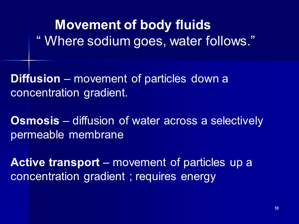 18 Movement of body fluids Where sodium goes, water follows. Diffusion – movement of particles down a concentration gradient.