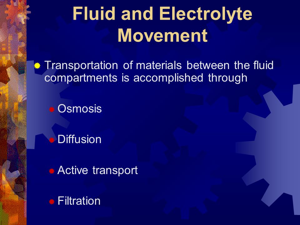 Fluid and Electrolyte Movement  Transportation of materials between the fluid compartments is accomplished through  Osmosis  Diffusion  Active tra