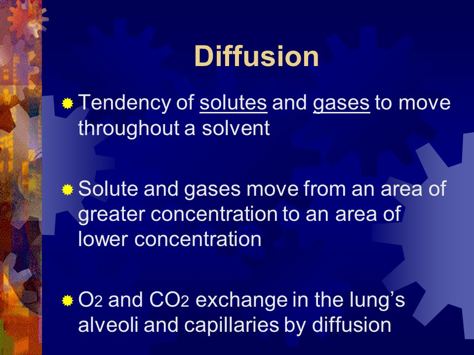 Diffusion  Tendency of solutes and gases to move throughout a solvent  Solute and gases move from an area of greater concentration to an area of lower concentration  O 2 and CO 2 exchange in the lung's alveoli and capillaries by diffusion