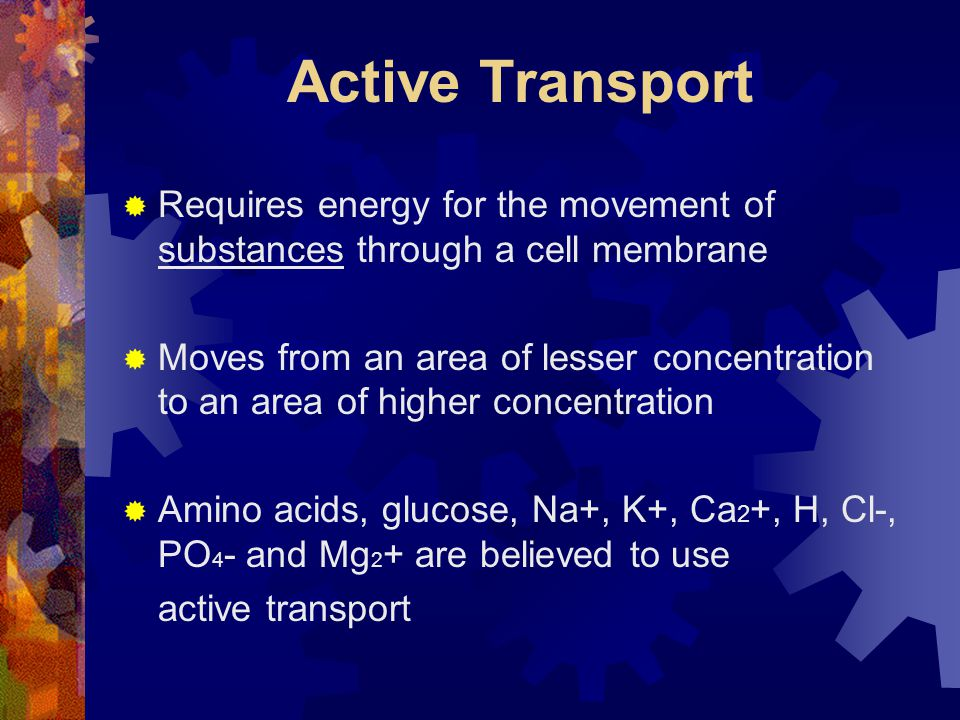 Active Transport  Requires energy for the movement of substances through a cell membrane  Moves from an area of lesser concentration to an area of h
