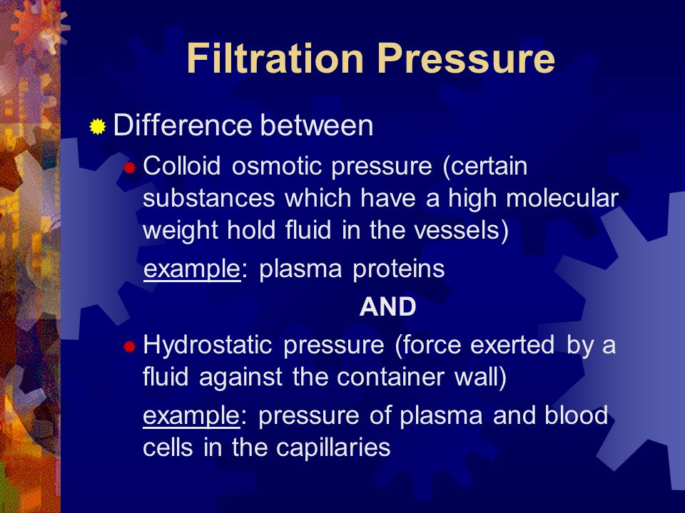 Filtration Pressure  Difference between  Colloid osmotic pressure (certain substances which have a high molecular weight hold fluid in the vessels)
