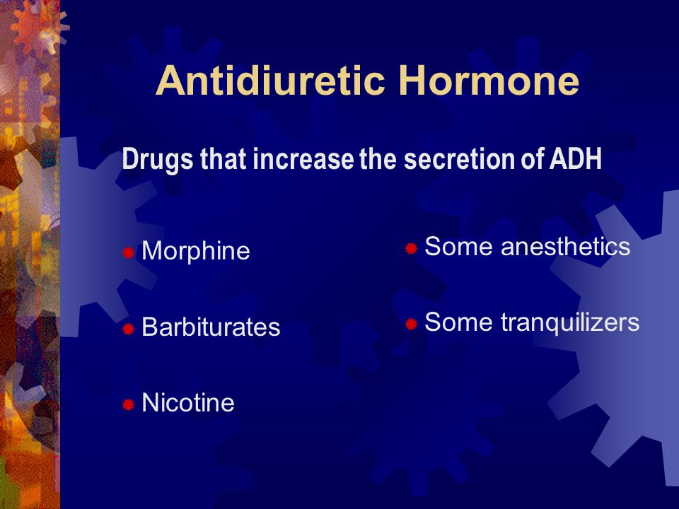 Antidiuretic Hormone  Morphine  Barbiturates  Nicotine  Some anesthetics  Some tranquilizers Drugs that increase the secretion of ADH