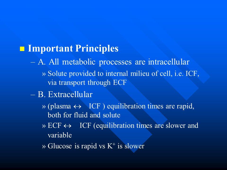 Important Principles – –A.