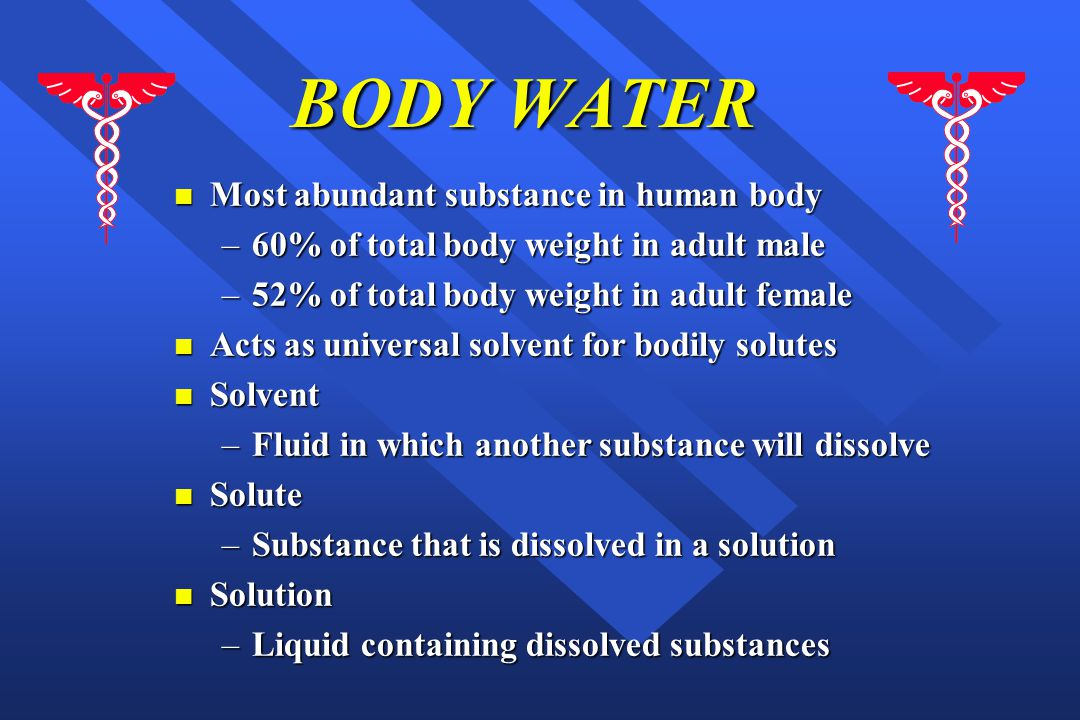 BODY WATER n Most abundant substance in human body –60% of total body weight in adult male –52% of total body weight in adult female n Acts as universal solvent for bodily solutes n Solvent –Fluid in which another substance will dissolve n Solute –Substance that is dissolved in a solution n Solution –Liquid containing dissolved substances