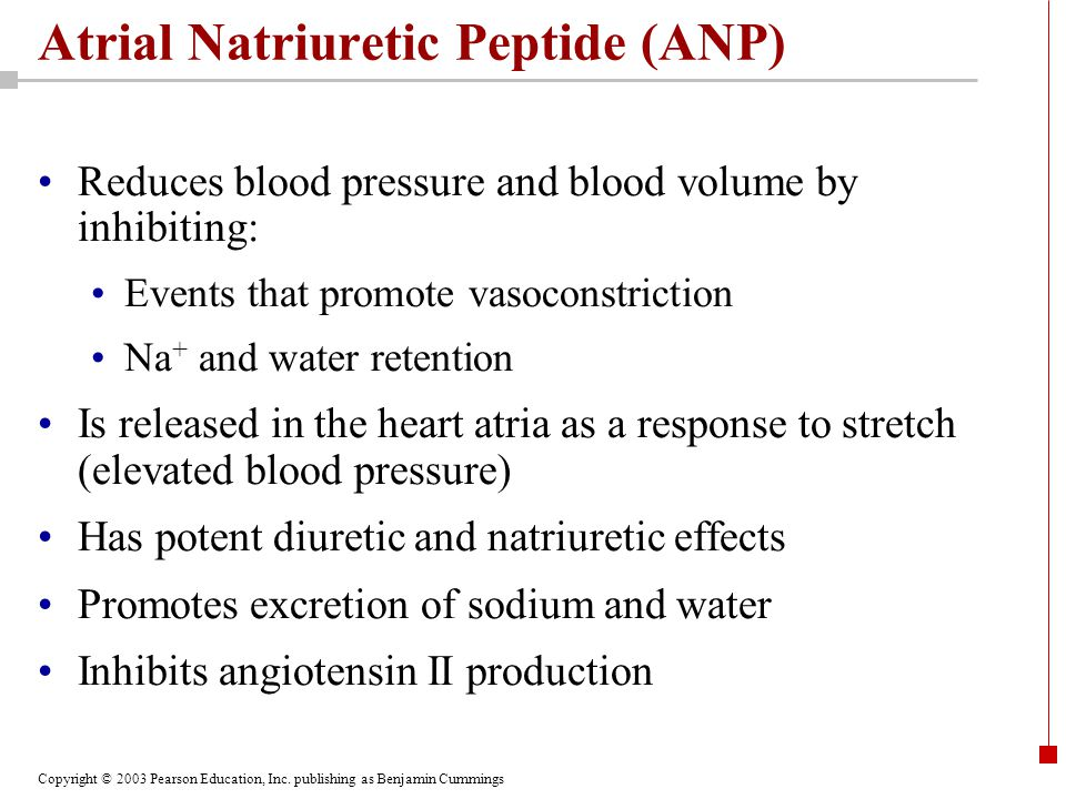 Copyright © 2003 Pearson Education, Inc. publishing as Benjamin Cummings Atrial Natriuretic Peptide (ANP) Reduces blood pressure and blood volume by i