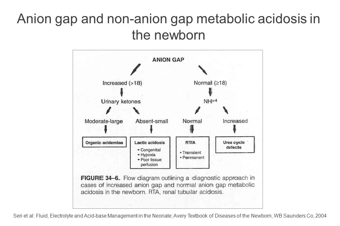 Anion gap and non-anion gap metabolic acidosis in the newborn Seri et al: Fluid, Electrolyte and Acid-base Management in the Neonate; Avery Textbook o