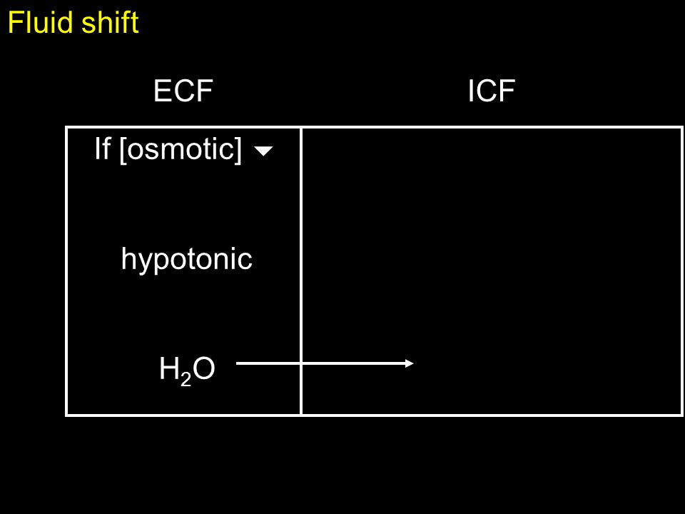 Fluid shift net loss of waterdehydration sweating, vomiting, diarrhea ICF and ECF become more concentrated  hypernatrimia  ADH, renin secretion   thirst, … give hypotonic fluids (H 2 O)