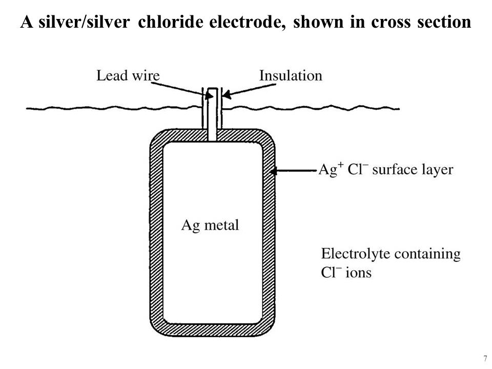A silver/silver chloride electrode, shown in cross section 7