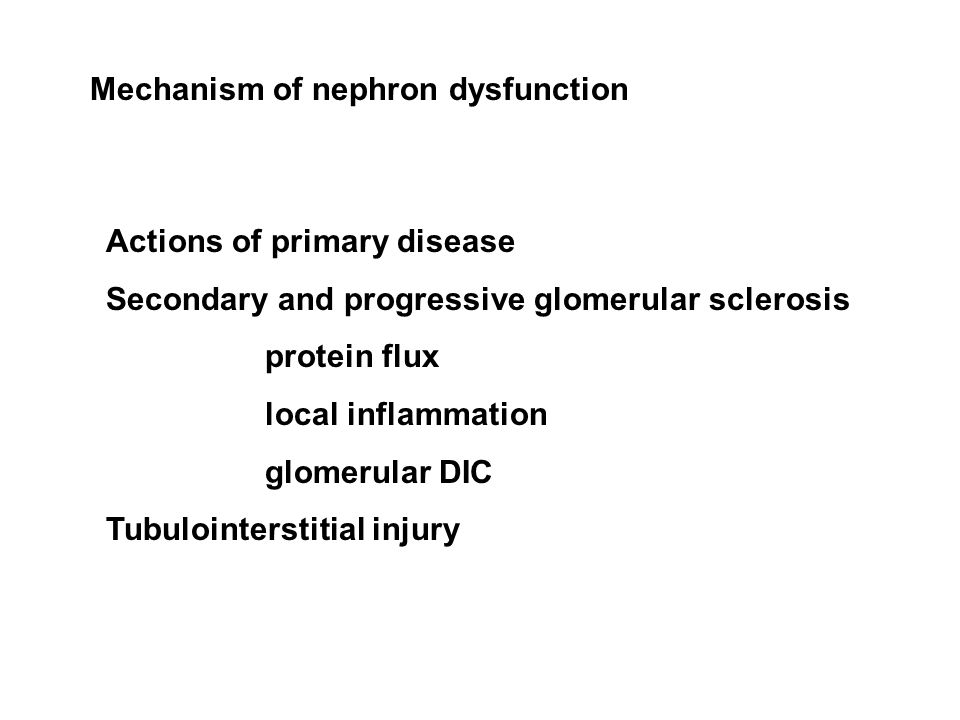 Mechanism of nephron dysfunction Actions of primary disease Secondary and progressive glomerular sclerosis protein flux local inflammation glomerular DIC Tubulointerstitial injury